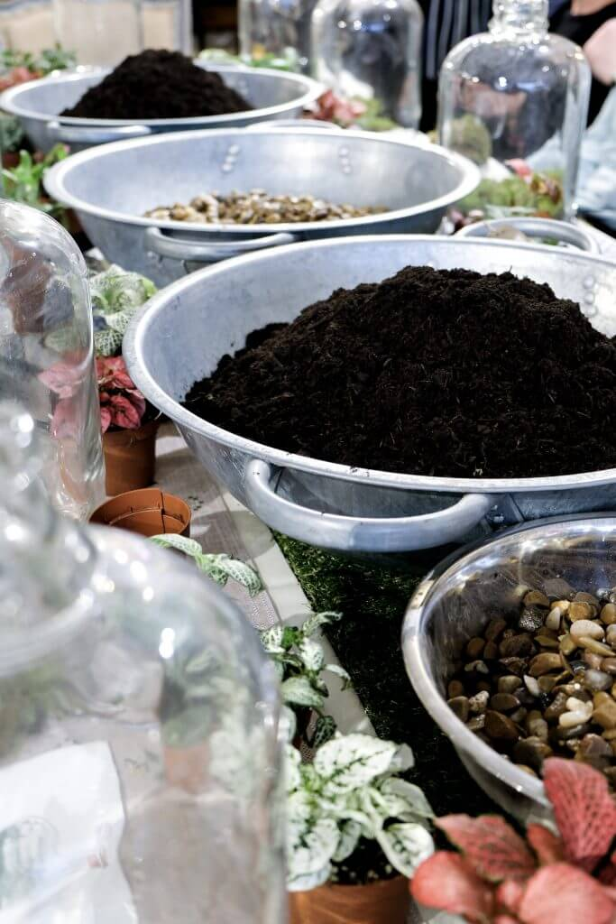 London Terrariums Workshop