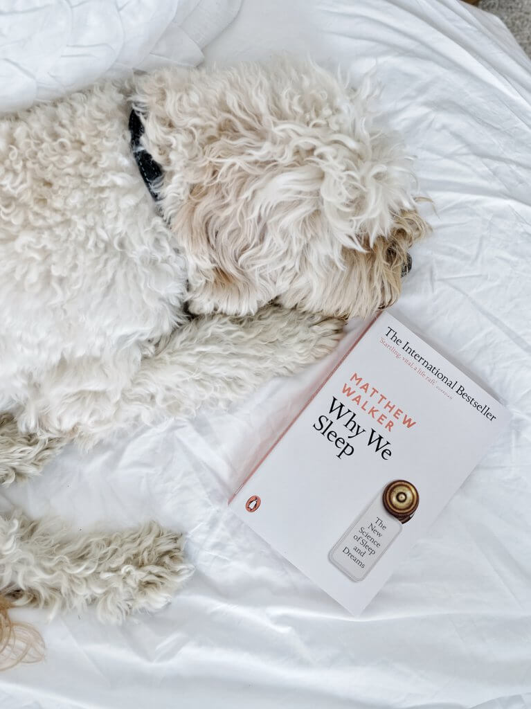 Dog sleeping with Why We Sleep Matthew Walker book